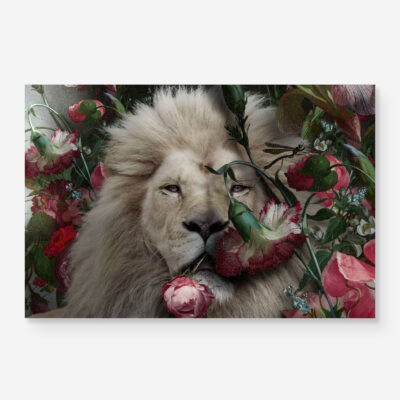 lion portrait with roses and flowers