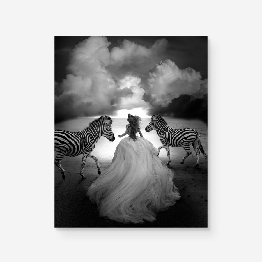 B&W photo of girl in dress running free with zebras