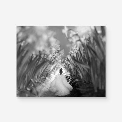 alice running in a flower field in B&W