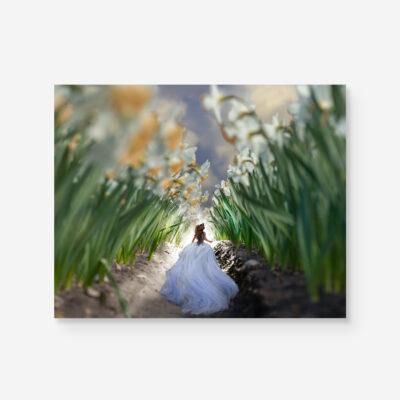 alice running in a flower field